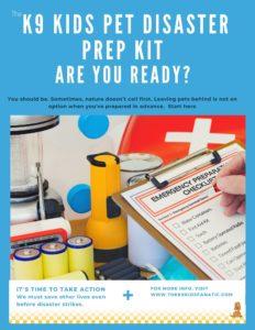 Disaster Kit for pet preparedness