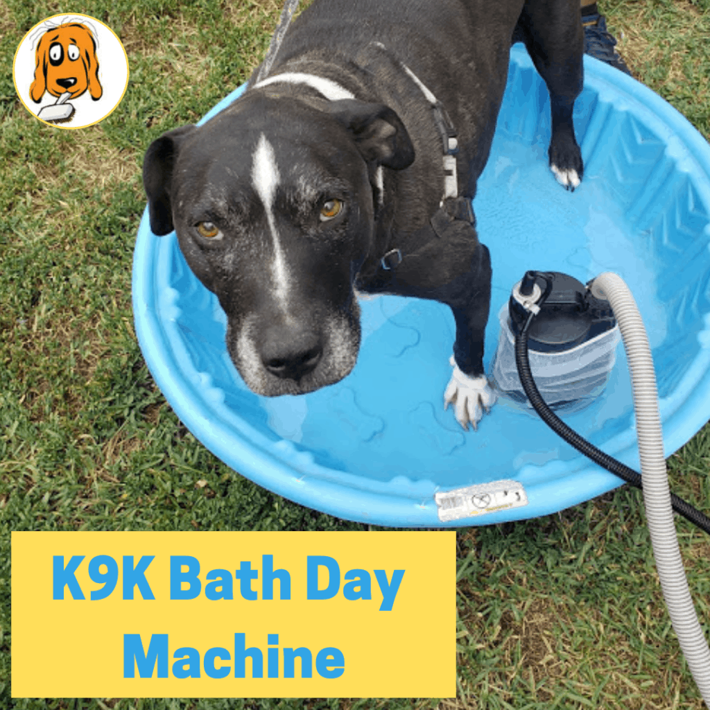 Pictured of dog being bathed with K9K Bath Day Machine